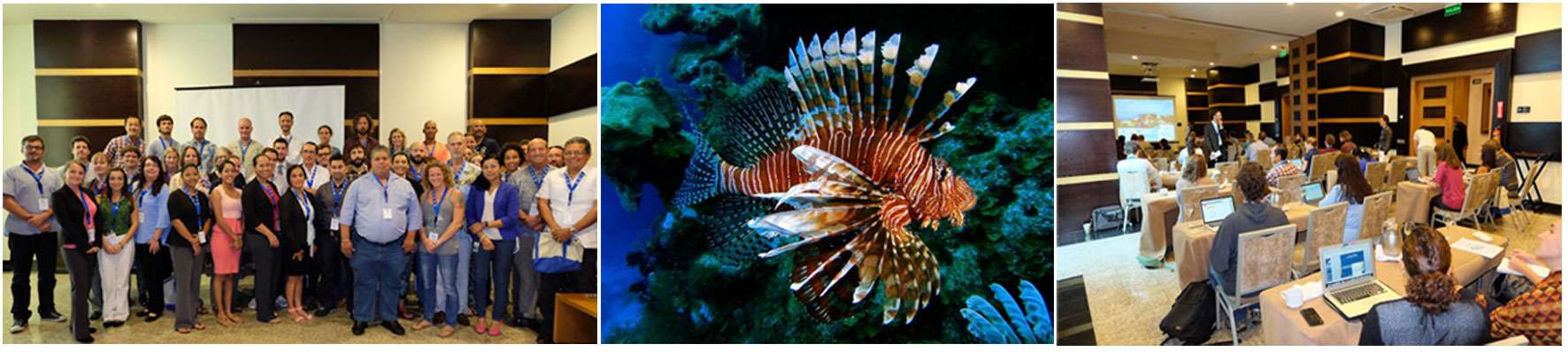Lionfish Management Group GCFI 2015
